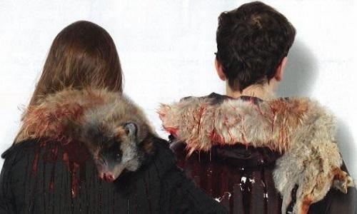 Stop à la vente de véritable fourrure