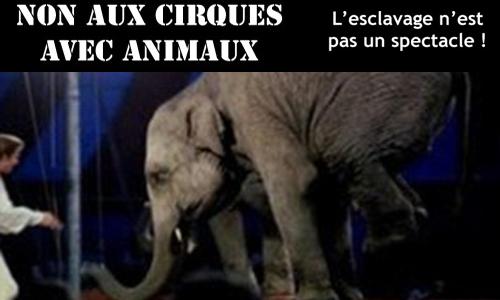 Non aux cirques avec animaux sur la communauté de communes du Havre