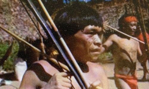 Pétition : Soutien au peuple Yanomani