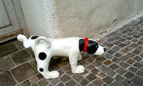 Pétition : Toilettes publiques canines !