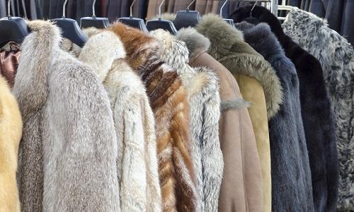 Pétition : Pour que Creasy Fashion arrête de vendre de la fourrure