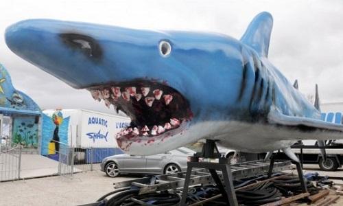 Interdire Aquatic Shark, les spectacles d'otaries d'Aquatic Sharks à St Macaire et dans les autres villes