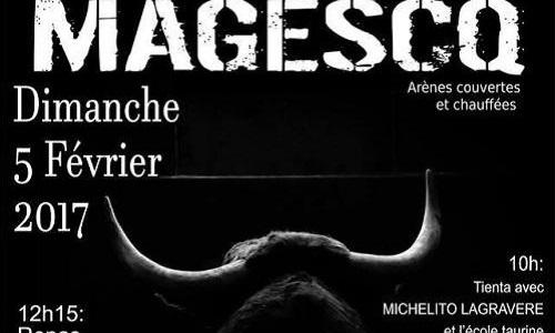 Magescq - Arrêtez la barbarie taurine immédiatement