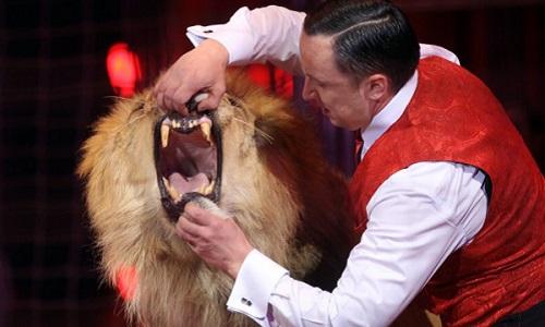 Le cirque de l'infamie à Mougins pendant 9 jours