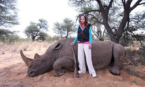 Stop au braconnage des rhinocéros