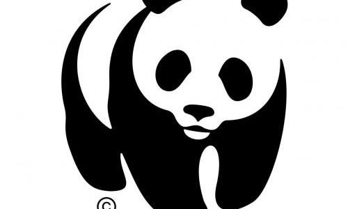Soutenons l'association WWF, elle sauve des milliers d'animaux chaque jour