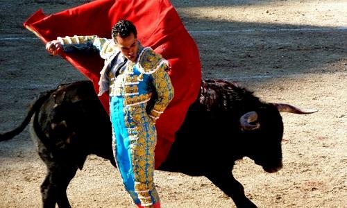 Pétition : Il faut un amendement à l'alinéa 7 ! Permettons la corrida uniquement par tradition !