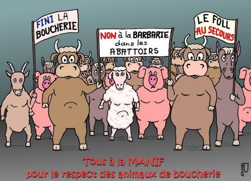 Stop au massacre dans les abattoirs Francais!