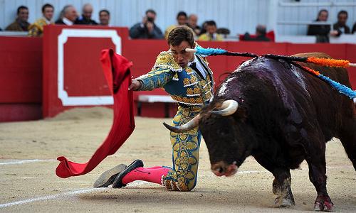 Corrida Image pétition : contre la corrida organisée à arles le week-end de pâques