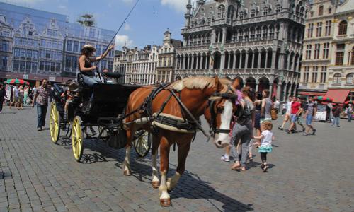 Contre l'interdiction des calèches à Bruxelles
