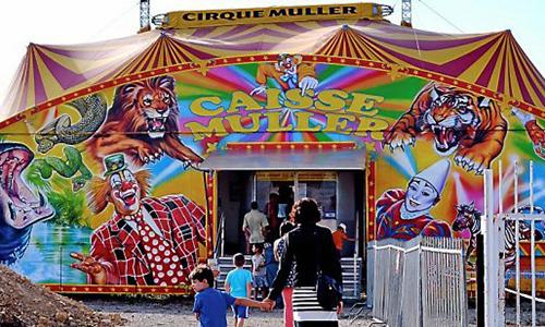 Pour l'interdiction des cirques avec animaux à Gassin dans le Var