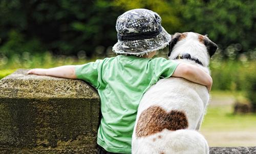 Pour une sensibilisation des enfants à la cause animale dans les écoles
