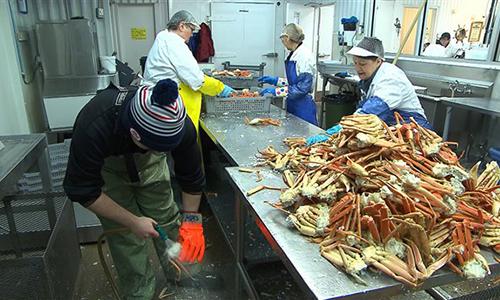 Non aux distributeurs de viande en France et de crabes vivants en Chine !