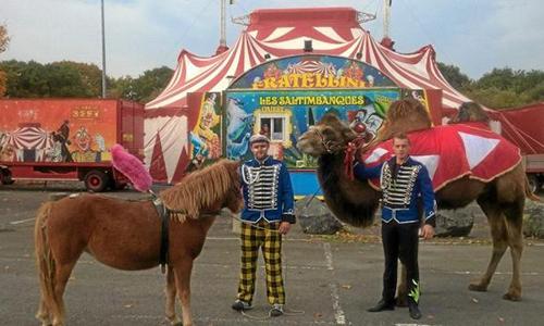 Pour l'interdiction et départ du cirque Fratellini à Tourlaville