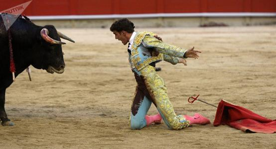 Tous contre la corrida et la cruauté animale