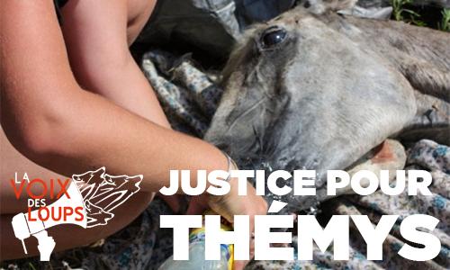 Justice pour Thémys