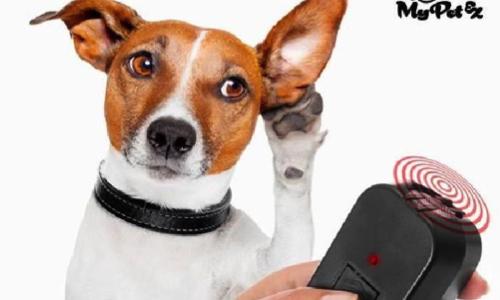 STOP à l'utilisation des ultrasons pour éloigner les animaux