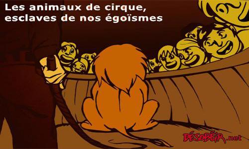Pour des cirques sans animaux à Rodez