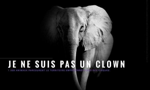 Refusons les cirques avec animaux dans le Var