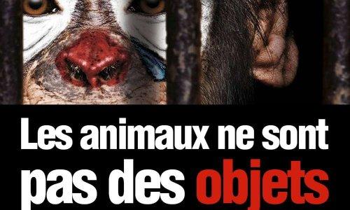 Non aux cirques avec animaux à Pont-à-Mousson !