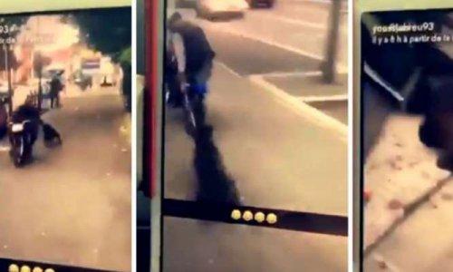 Peine exemplaire pour l'individu ayant traîné un chien derrière un scooter à Bobigny