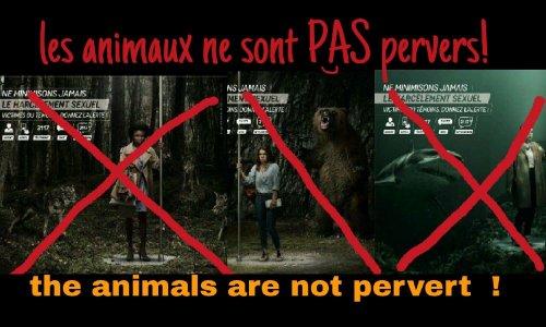 Pétition : Les animaux ne sont PAS pervers ! Animals are not perverts !