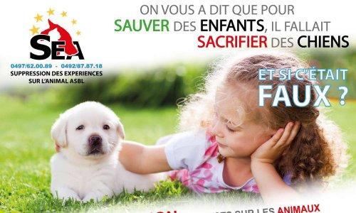 Nous vous demandons la garantie que tout don à la campagne Télévie 2019 ne servira pas en réalité à des recherches sur des « modèles » animaux, inutiles et sans lendemain, très dangereuses pour notre santé, le plus souvent.