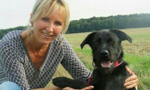 Petition Non Au Licenciement De Celine Ravenet Du Refuge D