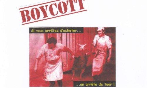 Pétition : Appel au boycott de tous les produits d'origine animale : viande, charcuterie, oeufs, lait, poissons et fruits de mer et leurs dérives : si vous arrêtez d'acheter, on arrête de tuer !
