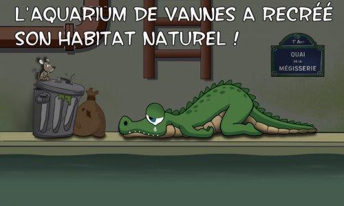 Eléonore, un crocodile condamné aux égouts
