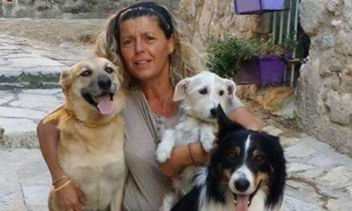 Pétition : Interdire l'utilisation d'animaux dans l'émission
