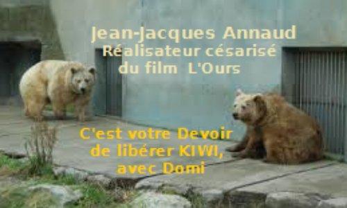 """M. JJ Annaud, réalisateur césarisé du film """"L'Ours"""", c'est votre Devoir de Libérer Kiwi de son agonie au zoo, avec son copain Domi"""