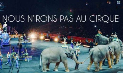 Interdiction du cirque Europa