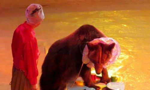 Non aux cirques avec animaux sauvages à Ris Orangis