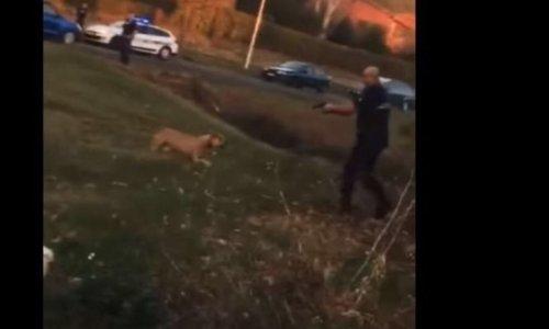 LA POLICE S'Y MET AUSSI