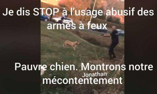 Pétition : Indignation face à l'usage de l'arme à feux face à un chien