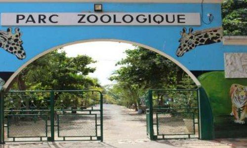 Sauvons le zoo de Hann