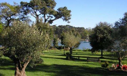Pétition : Soutien pour la plantation d'un nouvel arbre aux jardins de mémoire, 56400 PLUNERET