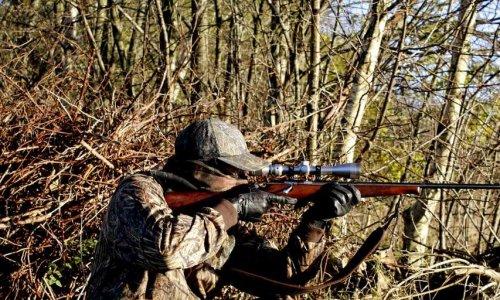 Sanctionnons les chasseurs avec un permis de chasser à points !