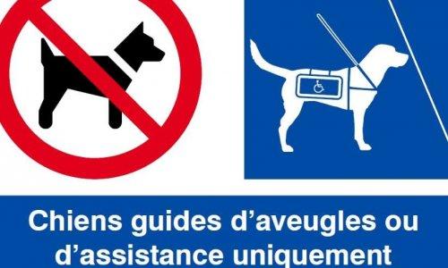 Non aux animaux personnels dans les lieux publics