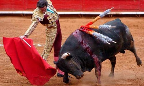 Interdiction de la corrida dans le monde