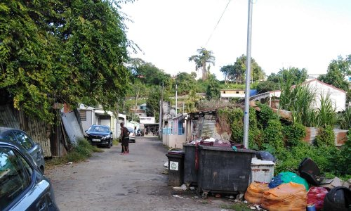 Quartiers Cour Zamia, Chemin Neuf, Raspail en danger
