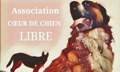 SOS Association Coeur de Chien Libre bientôt à la rue