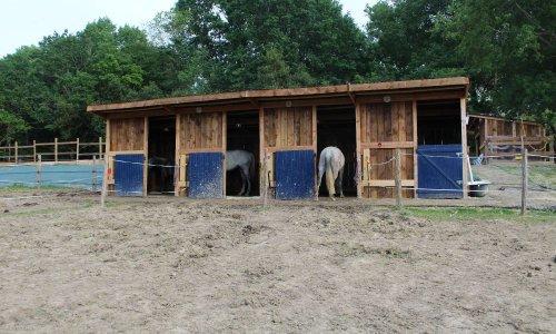 Écurie en danger de démolition, chevaux en péril !