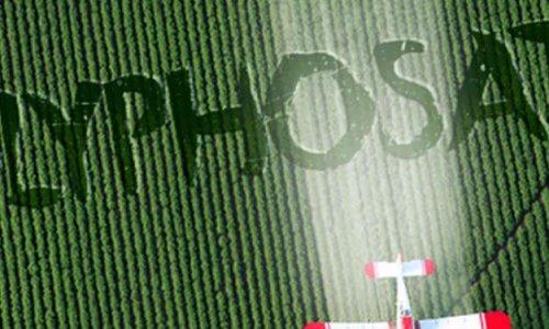 Contre la décision du gouvernement aujourd'hui , de reporter à nouveau l'arrêt du glyphosate