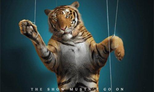 Pétition : Non aux cirques avec animaux à Pont-l'Abbé