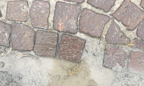 Pétition : Réfections des voieries ST jean de maurienne