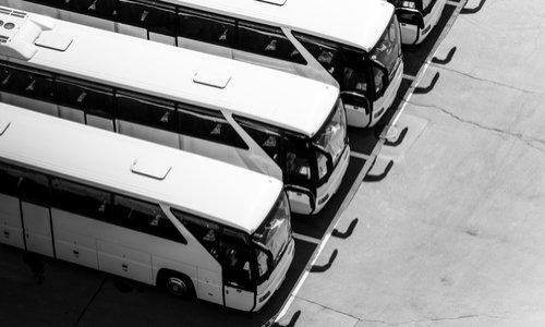 Plus de bus et horraire pour lignes Trace