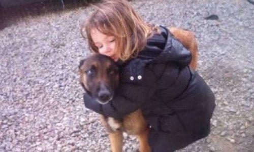 Contre l'euthanasie d'un chien qui protégeait bien sa famille