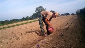 Pétition : Lettre des agriculteurs au Ministre de l'Agriculture à propos des Cotisations Volontaires Obligatoires